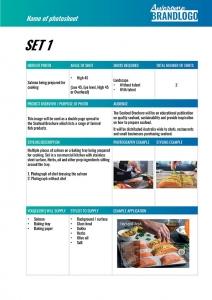 Example Brief pg2