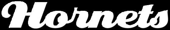 Aspley hornets club logo